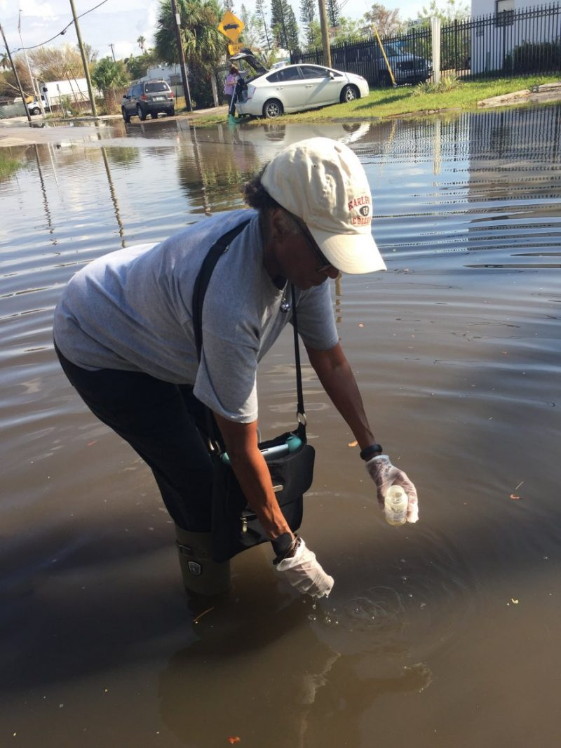 Beverly Ward Collecting Tidewater Sample
