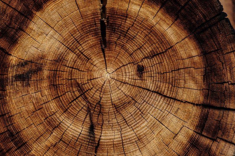 Rings of Tree