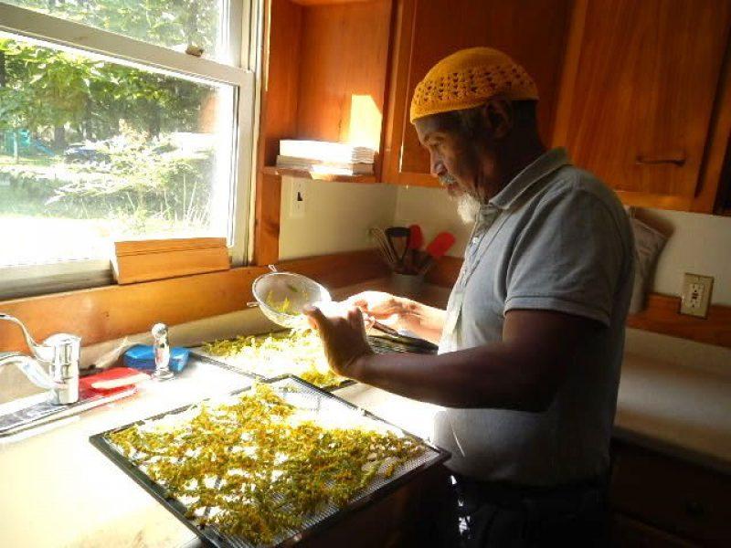 Community member El Ha Ghan sort herbs as part of the Diaspora Earthcare Coalition's medicinal herb production project.