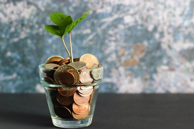 Glass filled with pennies and nickels with small plant growing out of it