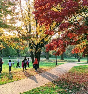 Indiduals playing in park with maple trees changing color