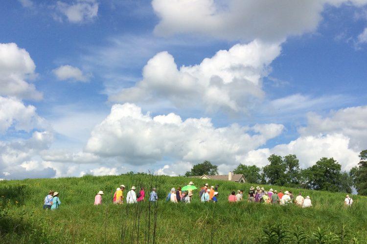Line of people walking in field with blue sky
